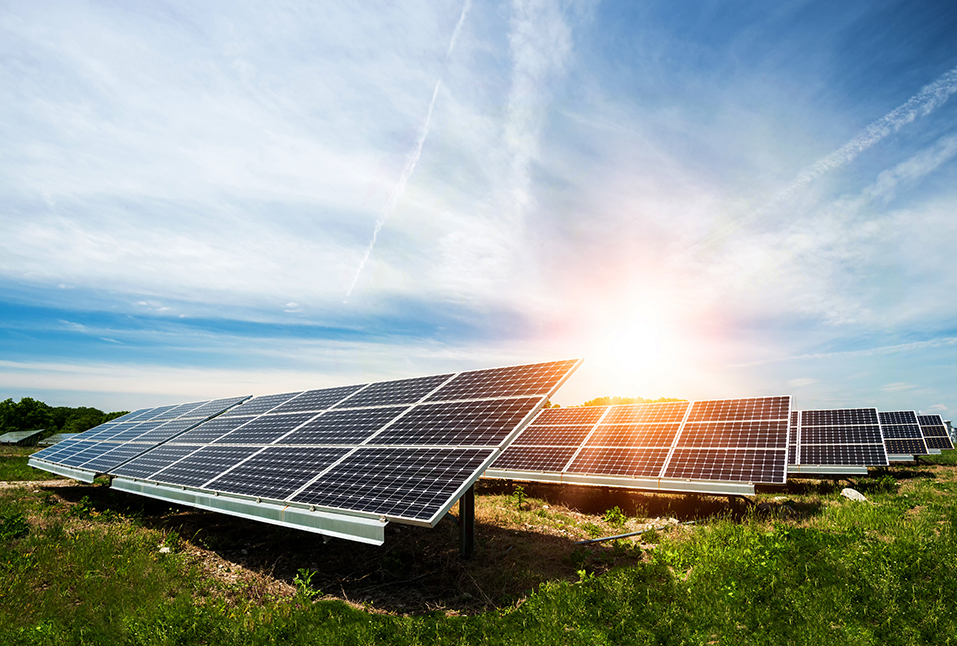 Teraciel Group | CSR | Sustainability